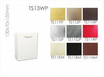 TS13WP